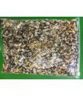 Agapornis & Valkparkieten voer 1kg ( Papegaaien Paleis )