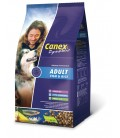 CANEX - ADULT VIS&RIJST 12,5 KG VIS & RIJST ADULT