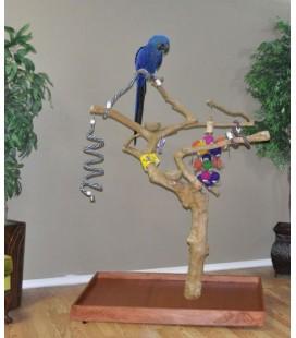 Java Bomen Voor papegaaien xxl